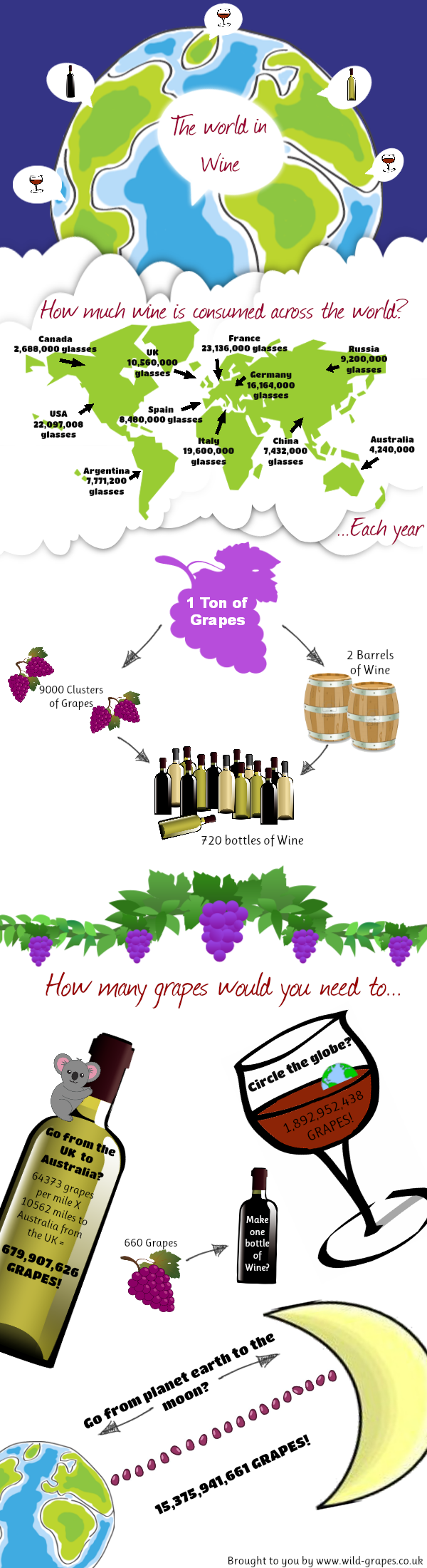 Fun and Interesting Facts About Wine